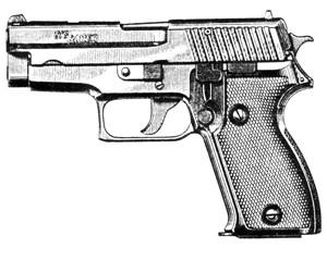 Sig Sauer 226/228, 9mm, 10 RD Image